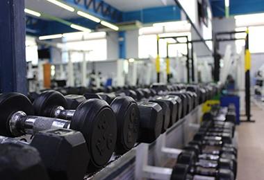 sala musculación gimnasio elche cdalgar