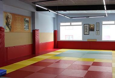 sala aikido gimnasio elche cdalgar